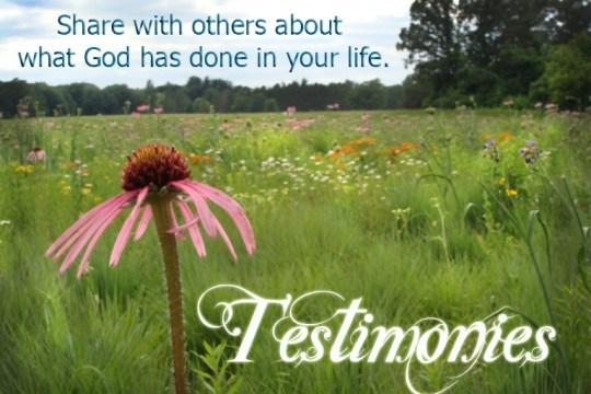 Testimonial Page